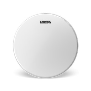 Evans B10UV1 UV1 Coated 10