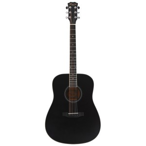 IvanS guitar AD-50S Black6
